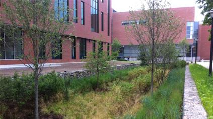 Crystal Greens Landscape Inc.